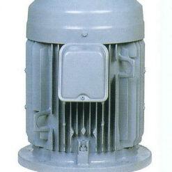 มอเตอร์ฮิตาชิ Hitachi แบบหน้าแปลน 3 แรงม้า รุ่น 3 VTFO-K(DK)(L)