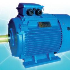 มอเตอร์อินไลน์ Inline Motor ขนาด 0.5 แรงม้า 4 โพล 1500 รอบ B3 ขาตั้ง